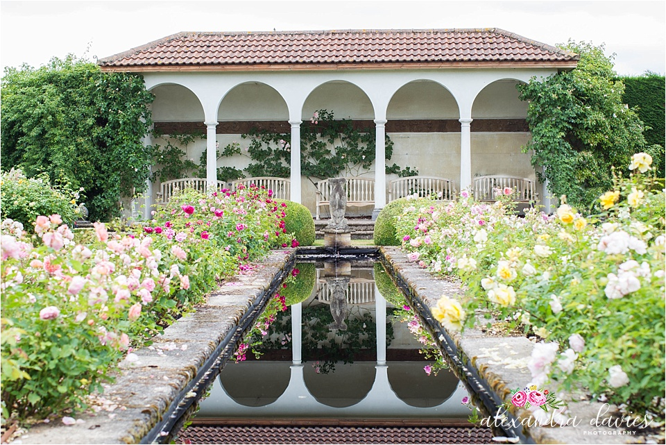The Long Garden David Austin Roses