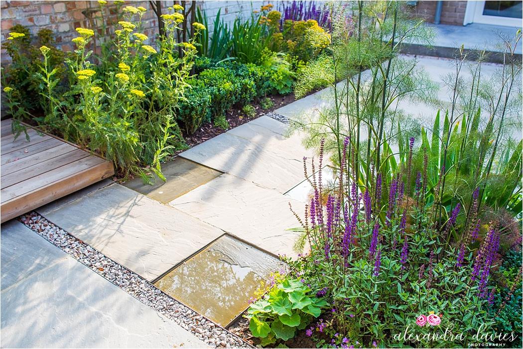 professional garden photographer