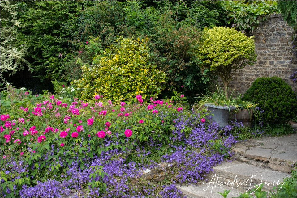 Mixed borders, Barnsley House