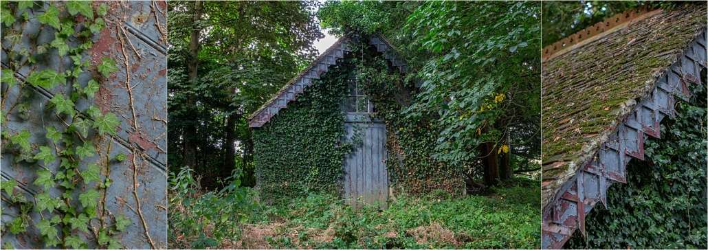 Disused boat house with climbing ivy